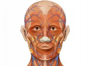 İnsan Anatomisinde Korkunç Değişim