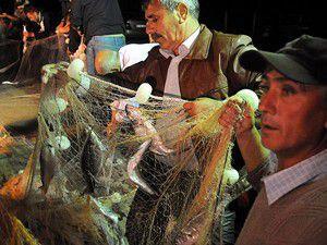 Balıkçıya lüfer piyangosu
