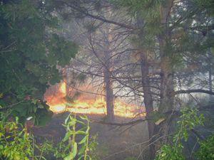 Konyada 80 hektar alan yandı