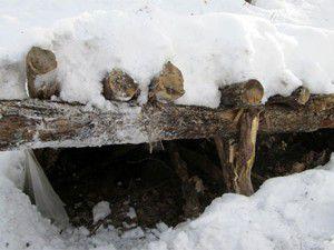 Kış için hazırlanan sığınaklar imha edildi