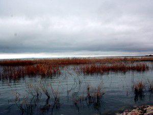 Beyşehir Gölü de Haliç gibi temizlenecek