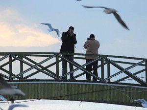 Beyşehir gölü fotoğrafçıların ilgisinı çekiyor