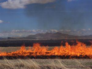 Konyada anız nedeniyle 4 kat fazla orman yandı