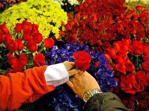 Çiçekçiler 14 Şubata hazırlanıyor