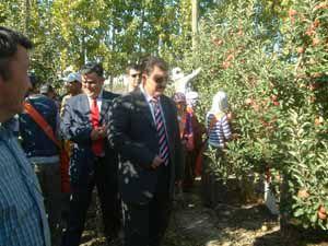 Türkiye nin en büyük meyve bahçesi