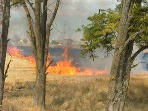 Teneke toplayan çocuklar yangın çıkardı