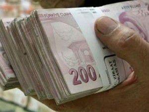 Çiftçilere tarımsal destek ödemesi yapılacak