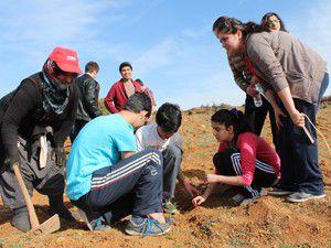 Beyşehirde lise öğrencileri fidan dikti