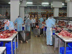 Et ve Süt Kurumu kuruldu