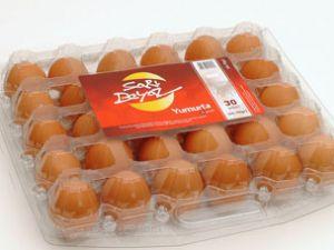 Konya en önemli yumurta üretim merkezi