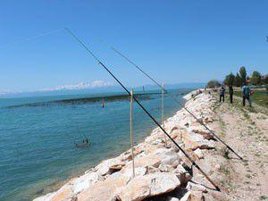 Olta meraklıları göl kıyılarını şenlendirdi