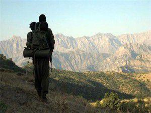 PKKlı 13 kişi,Metina kampına ulaştı