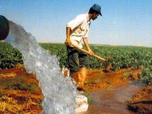Dünya Çiftçiler Günü, Kuluda kutlandı