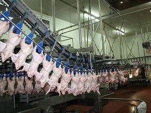 Yılda 32,6 kilogram et tükettik