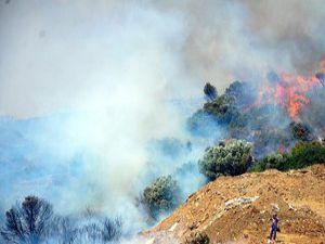 Bodrumdaki yangınlar kontrol altına alındı
