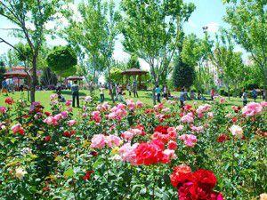 Konyada beş parkın yapımı devam ediyor