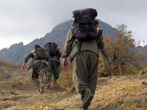 Siirtte 3 PKKlı kadın cesedi bulundu