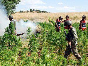 Diyarbakırda uyuşturucu tacirlerine göz açtırılmıyor