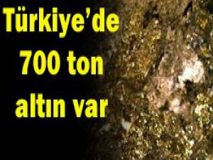 700 ton altın rezervimiz var
