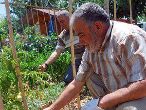 Huzur Bahçelerine yoğun ilgi