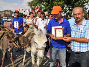 Akşehirde eşek yarışı yapıldı