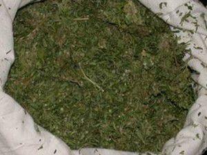 Konyada 19 kilogram esrar ele geçirildi
