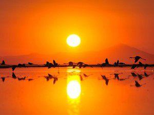 Tuz Gölü Dünya Mirası Geçici Listesine alındı