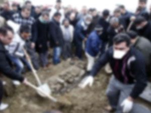 Domuz gribinden ölenlerin sayısı 112 ye yükseldi