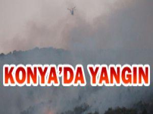 Beyşehirdeki yangın söndürüldü