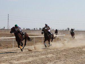 21. geleneksel mahalli at yarışları başladı