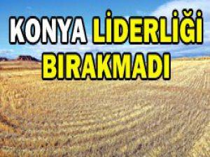 2012 verilerinde de lider Konya