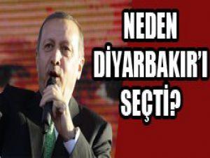 Yalçın Akdoğan açıkladı...