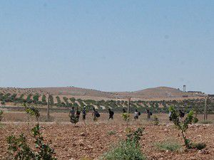 Suriye sınırında kaçakçılara müdahale