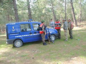 Jandarma doğal yaşamı koruyor