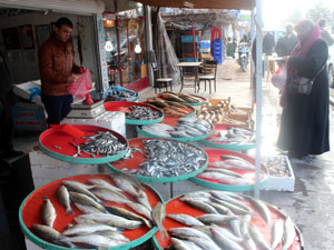 Soğuklar tatlı su balığı fiyatını artırdı