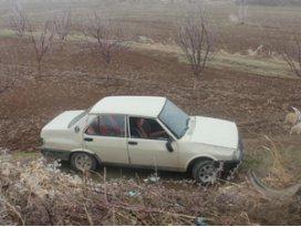 Otomobil meyve bahçesine düştü: 2 yaralı