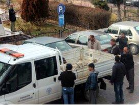 Beyşehirde sokak köpekleri ile mücadele