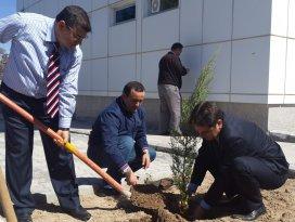 Beyşehir'de ağaç dikme etkinliği