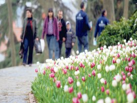 Bahar yorgunluğuna dikkat