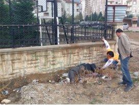 Duvar kenarında ölü bulundu