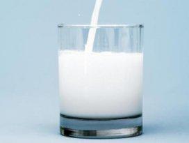 Konya süt üretiminde Türkiye 2.si