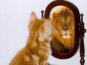 Aynaların neden yalan söylediği bulundu!