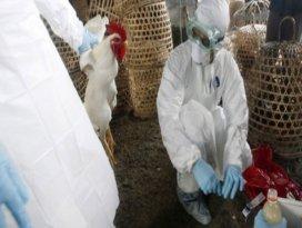 Çinde bulaşıcı hastalıklar kol geziyor