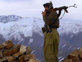 Hakkaride 1 PKKlı teslim oldu