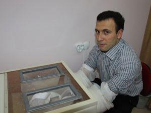 Mısır talaşı ile varis tedavisi