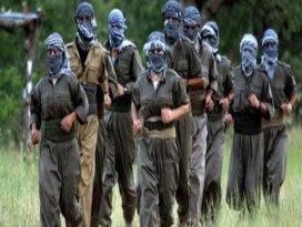 PKKya büyük şok: Çok sayıda gözaltı var!