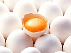 Yumurtayla haftada 1,5 kilo verin