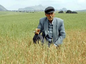 Sarayönünde ödüllü çiftçi eğitim projesi