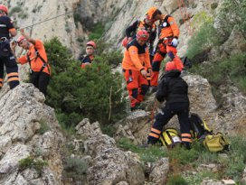 Uçurumda mahsur kalan koyunları AFAD kurtardı
