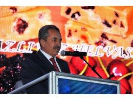 Akşehirde kiraz ve kültür sanat festivali